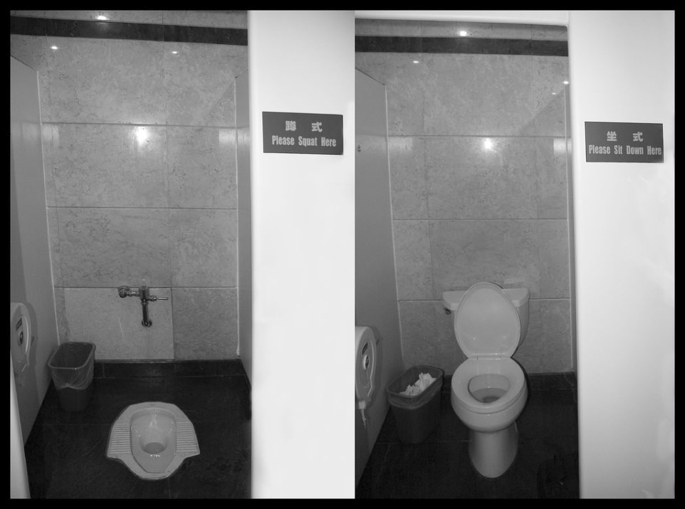 Old-School and Modern Toilets - With Instructions!